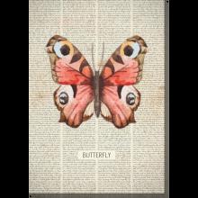 gotowy obraz motyl